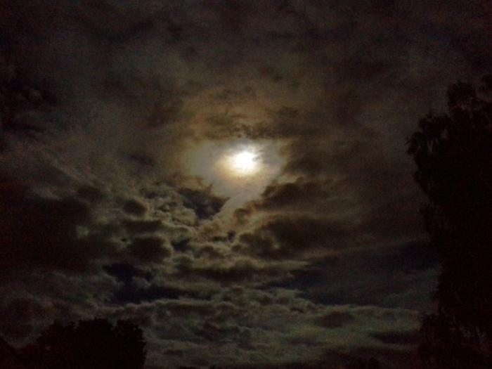 9-8-14-Moon